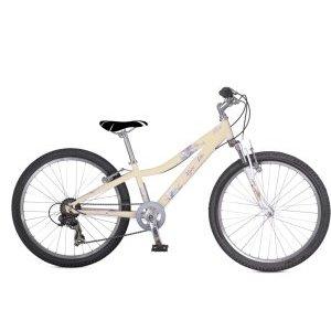 Подростковый велосипед Alpine Bike 550SL 24